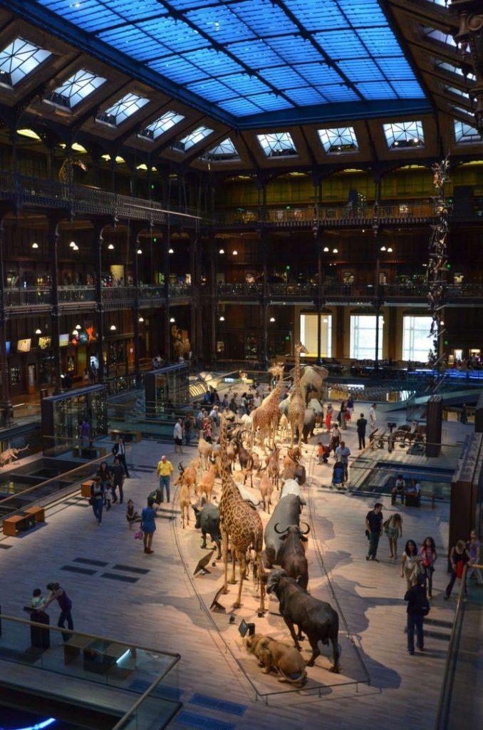 La Grande Galerie de l'Evolution.