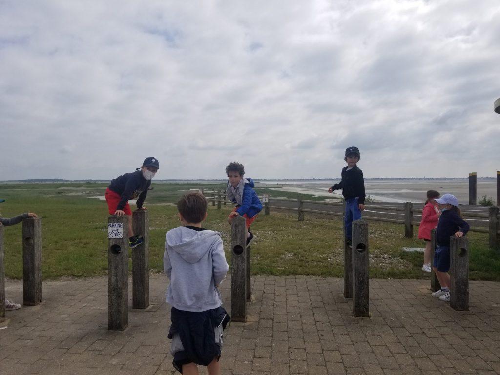 Sortie en Baie de Somme